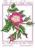 Rose Stitches