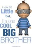 I'm Big Brother