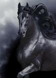 Wild Horse Art