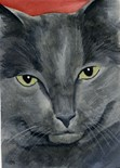 Russian Blue Cat Art