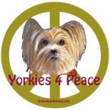 Yorkies 4 Peace