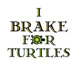 Sea Turtle Rescue