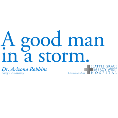 A Good Man in a Storm - Grey's Anatomy
