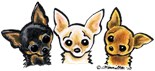 Chihuahua Lover