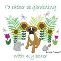 Boxer garden Thong Underwear