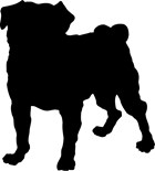 Dog Silhouette Portraiture