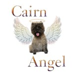 Cairn Terrier Angel
