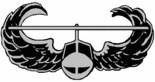 Air Assault Family