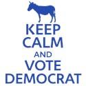 Democrat Yard Signs