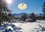 Mountain View Ca