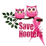 Save Hooters