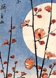 Gardens Moon