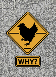 Why did the Chicken Cross? T Gifts