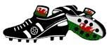 Welsh Soccer