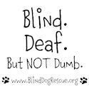 Blind dog Dog T-Shirts