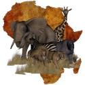 Wild animals Queen Duvet Covers