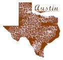 Austin Organic Kids T-Shirt