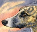 Whippet Puzzles