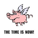 Do Pigs Fly