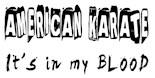 American Karate Boyfriend