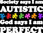 Autistic=Perfect