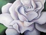 Botanical Lavender Rose