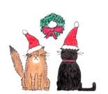 Red Longhair Cat