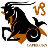 Animal Astrology