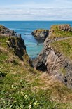 Carrick Rede