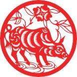 Oriental Astrology
