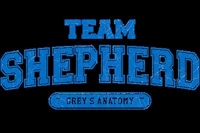 Grey's Anatomy Team Shepherd