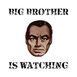 Big Brother Watching