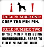 Min Pin