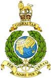 Navy Logo