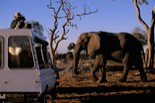 Botswana National Park