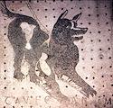 Cave canem pompeii mosaic Framed Tiles