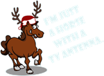 Horse Reindeer Joke