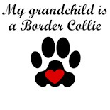 Border Collie Owners