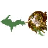 Upper Peninsula
