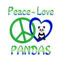 Panda Raglan