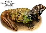 Bent Lizard