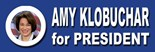 I Voted Amy