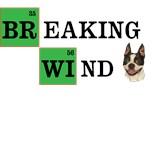 American Boston Terrier Rescue
