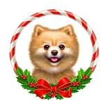 Pomeranian Christmas