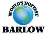 Barlow Family Reunion