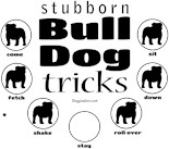 Stubborn Bulldog Tricks