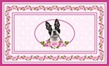 Boston Terrier Mom