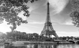 Scenic Paris