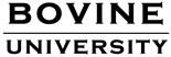 Bovine University