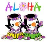 Aloha Penguin